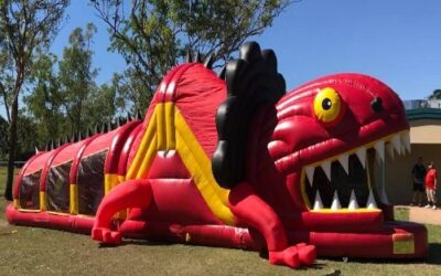 Frill Neck Lizard Obstacle Darwin